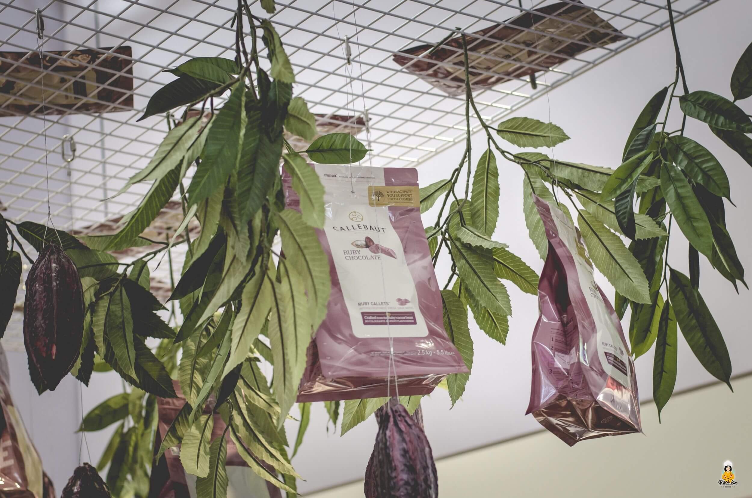 Rosa Schokolade: Ruby von Barry Callebaut
